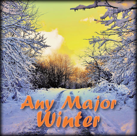 Any Major Winter