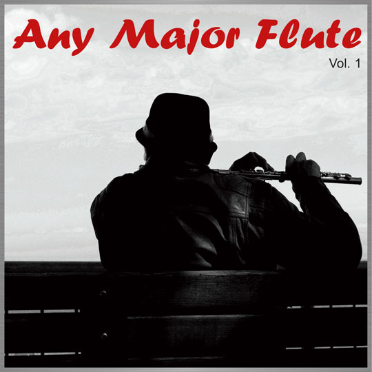 Any Major Flute-1