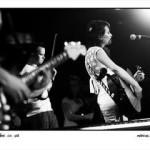 The Songbirds: Vol 2