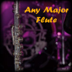 Any Major Flute Vol. 2
