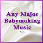 Any Major Babymaking Music Vol. 2