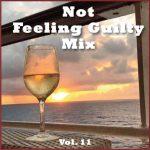 Not Feeling Guilty Mix Vol. 11